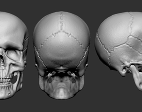 3D model Skull character