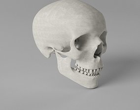 3D model game-ready nose Human Skull