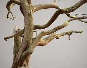 Low Boly Big Tree 3D model