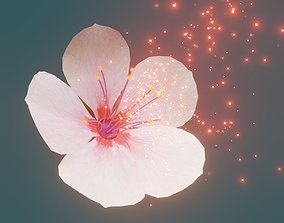 Cherry blossom 3D asset