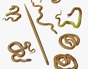 realtime Yellow Snake - 3D Mesh