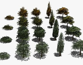 Real Time Trees 3D asset