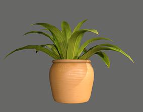 3D model realtime Pot Plant