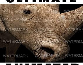 animated The Ultimate rhino - 3d rhinoceros