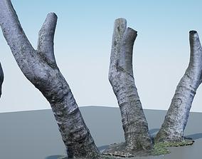 Tree Trunk - 05 3D model