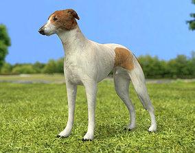 Greyhound 3D