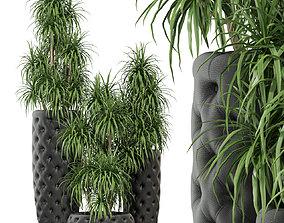 3D Plants collection 274 Fleurami CLUB