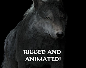 3D model Grey wolf rigged and animated and polar light