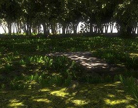 3D model Swamp