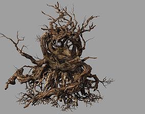 3D model Phoenix Nest-Bird Nest-Tree Root