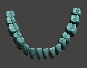 Digital Teeth 3D printable model