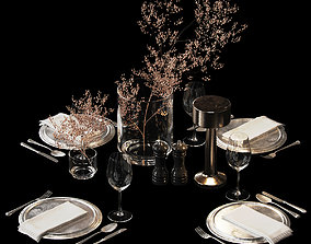 3D model Serving set with dried flowers