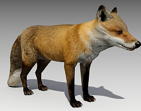 3D model Red Fox Animated
