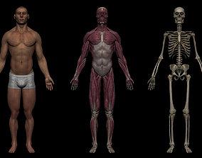 3D asset Realistic Male Basemesh Collection