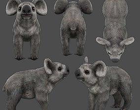 3D model koala