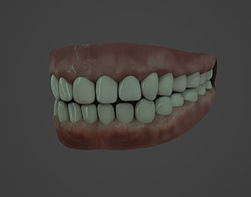 Human teeth 3D asset