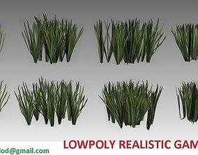 Lowpoly common grass 3D model