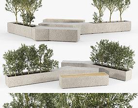 BOX PLANTER Olea europaea 3D model