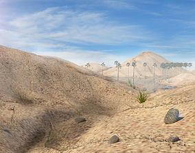 Desert Scene 3D