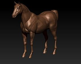 Horse 3D print model poly