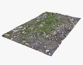 3D asset Mossy Ground