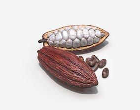 Cocoa Pod 3D model health