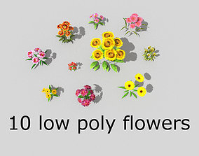 10 low poly flowers pack 3D asset