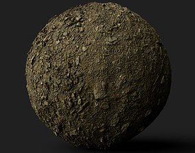 PBR Scanned Stoney Soil 3D model