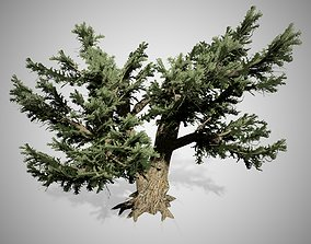 3D asset Cedar Of Lebanon Tree