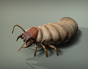 Insect Larva 3D model