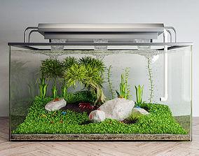 shrimp aquarium 3D model