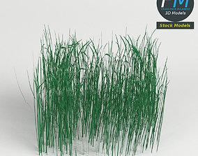 High grass module 3D