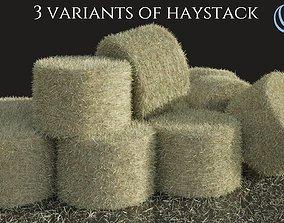3D Haystack