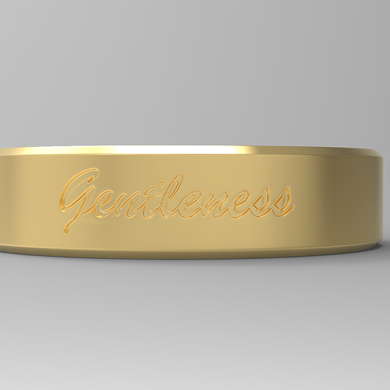 Gentleness Ring gold 24k polished