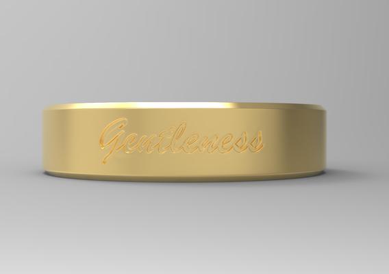 Gentleness Ring gold 24k polished