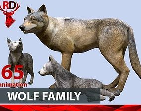 WOLF FAMILY 3D model