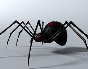 Black Spider Rigged 3D model