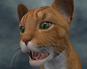 3D model UVWC-009 Cat Textures Only