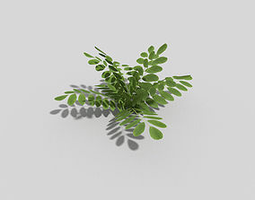 Low poly Plant foresr 3D asset VR / AR ready