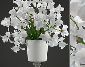 3D model bouquet of white flowers