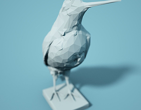 Low Poly Bird Model zoology