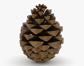 3D Pinecone