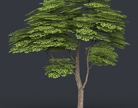 3D model Low Poly Tree 12
