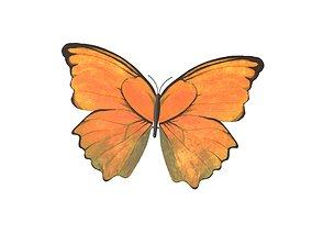 Butterfly v1 006 3D asset