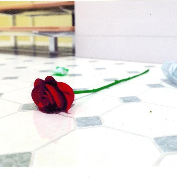 broken vase with a rose