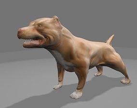 game-ready Pit Bull Dog 3d Model