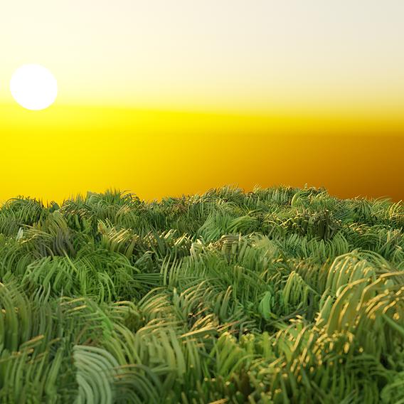 Test Render Sun Rise