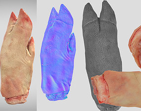 low-poly Raw Pigs leg 3D scan