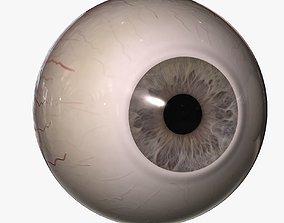 3D model Rigged Eyes