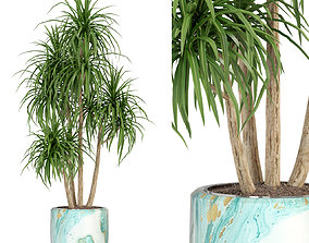3D Plants collection 287